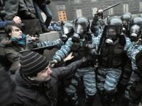 Бультерьеры против народа