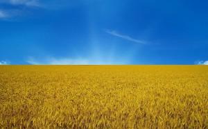 Знамя Великой Украины