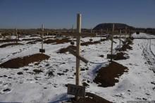 Огромное кладбище