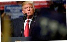 Трамп не станет мешать
