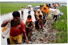 народ рохинджи