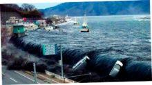 Но вернемся к цунами