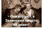 Thumbnail for the post titled: Зелёная власть начала воровать с малого