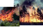Thumbnail for the post titled: Помощь в тушении пожаров